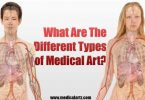What Are The Different Types of Medical Art?